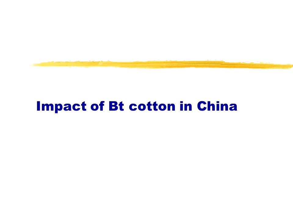 Impact of Bt cotton in China