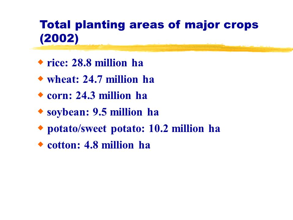 Total planting areas of major crops (2002) rice: 28.8 million ha wheat: 24.7 million ha corn: 24.3 million ha soybean: 9.5 million ha potato/sweet pot