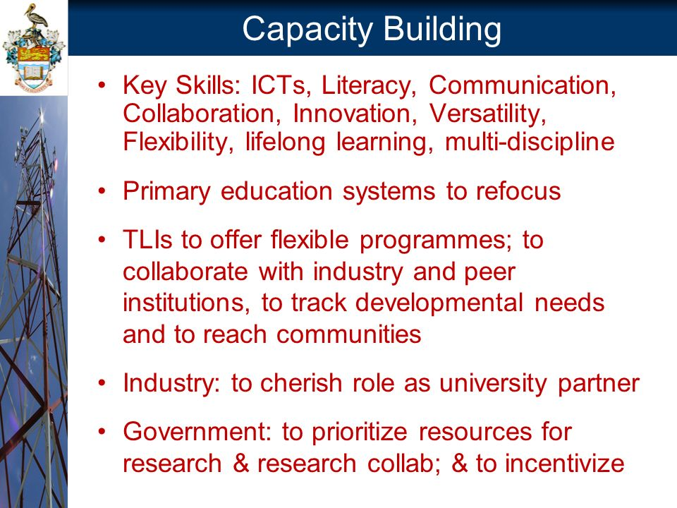 Capacity Building Key Skills: ICTs, Literacy, Communication, Collaboration, Innovation, Versatility, Flexibility, lifelong learning, multi-discipline Primary education systems to refocus TLIs to offer flexible programmes; to collaborate with industry and peer institutions, to track developmental needs and to reach communities Industry: to cherish role as university partner Government: to prioritize resources for research & research collab; & to incentivize