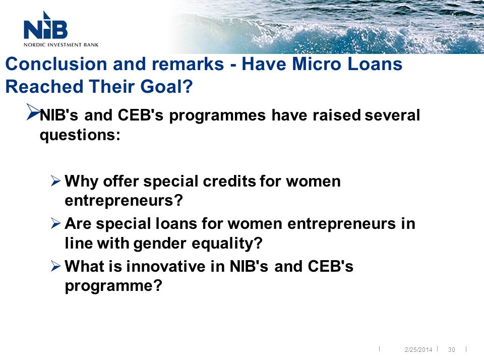 || | 30 Conclusion and remarks - Have Micro Loans Reached Their Goal.