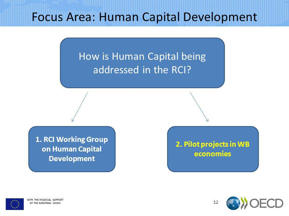 WITH THE FINANCIAL SUPPORT OF THE EUROPEAN UNION Focus Area: Human Capital Development 12 How is Human Capital being addressed in the RCI? 1. RCI Work