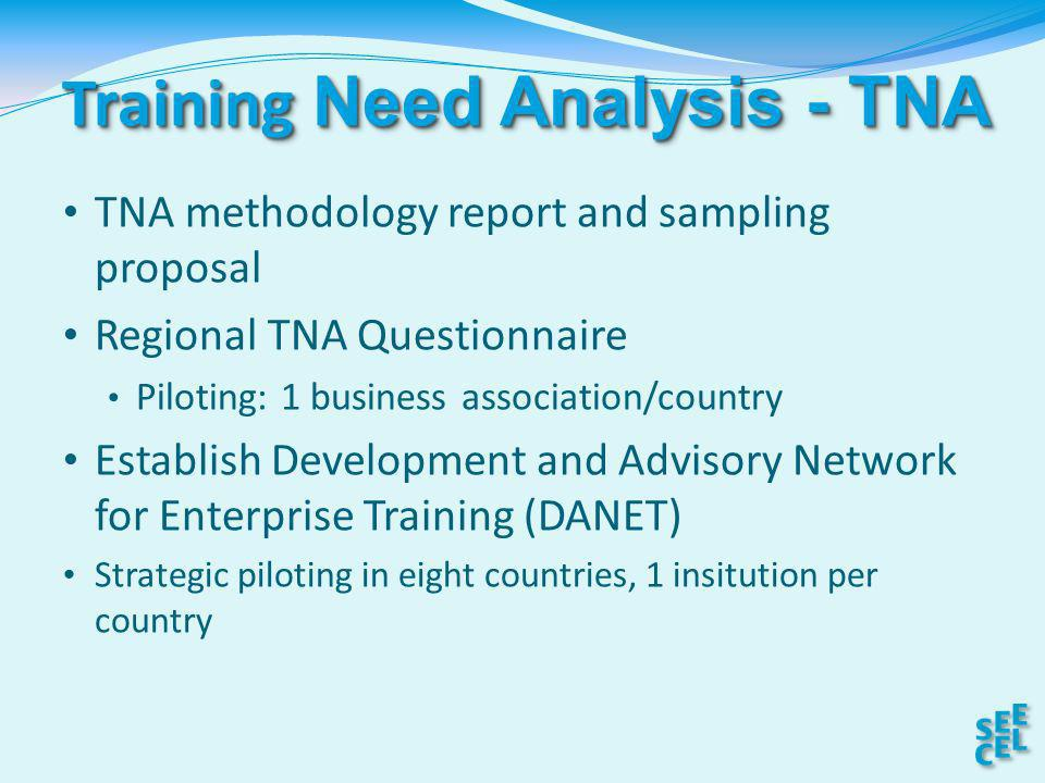Training Need Analysis - TNA TNA methodology report and sampling proposal Regional TNA Questionnaire Piloting: 1 business association/country Establish Development and Advisory Network for Enterprise Training (DANET) Strategic piloting in eight countries, 1 insitution per country