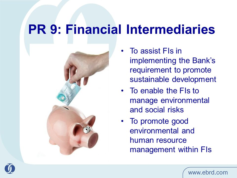 PR 9: Financial Intermediaries To assist FIs in implementing the Banks requirement to promote sustainable development To enable the FIs to manage environmental and social risks To promote good environmental and human resource management within FIs