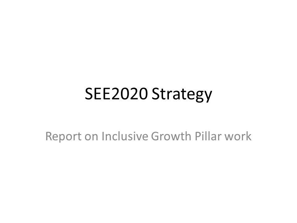 SEE2020 Strategy Report on Inclusive Growth Pillar work