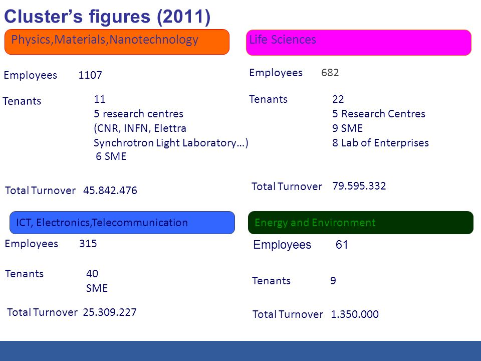 Clusters figures (2011) - 6 - Physics,Materials,Nanotechnology Employees 1107 Tenants 11 5 research centres (CNR, INFN, Elettra Synchrotron Light Labo