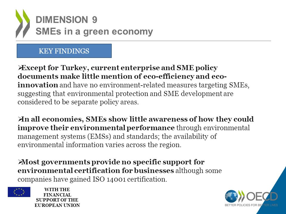 WITH THE FINANCIAL SUPPORT OF THE EUROPEAN UNION DIMENSION 9 SMEs in a green economy KEY FINDINGS Except for Turkey, current enterprise and SME policy