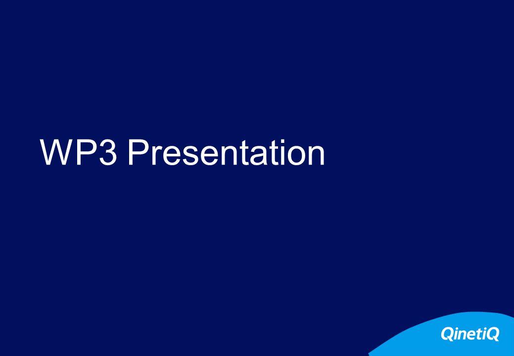 WP3 Presentation P