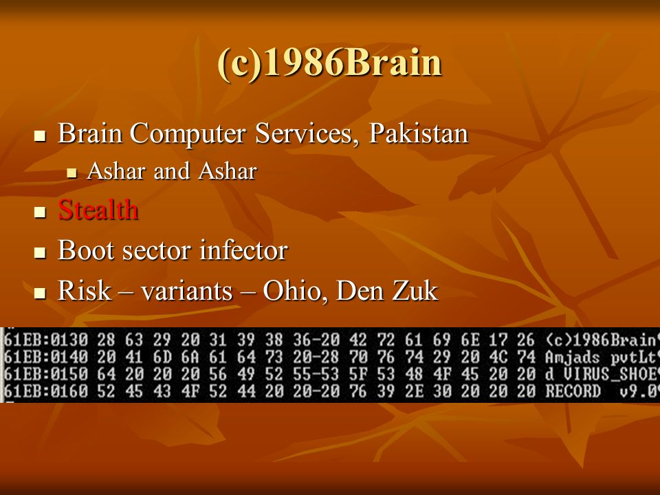 (c)1986Brain Brain Computer Services, Pakistan Brain Computer Services, Pakistan Ashar and Ashar Ashar and Ashar Stealth Stealth Boot sector infector Boot sector infector Risk – variants – Ohio, Den Zuk Risk – variants – Ohio, Den Zuk