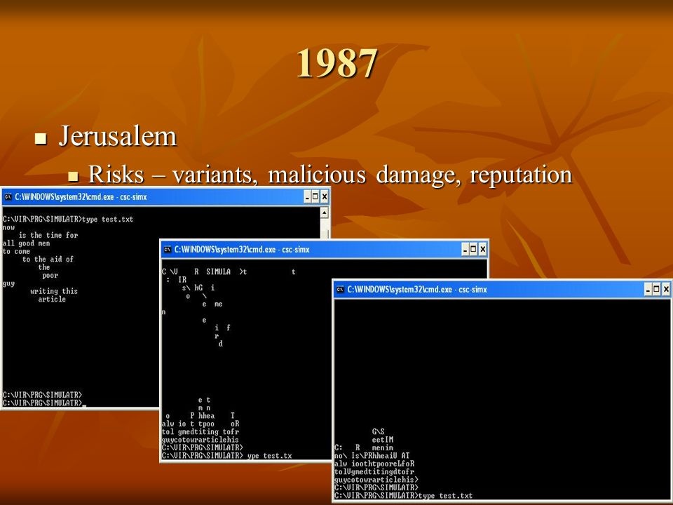 1987 Jerusalem Jerusalem Risks – variants, malicious damage, reputation Risks – variants, malicious damage, reputation