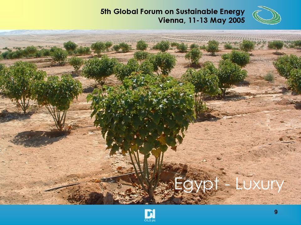 19 5th Global Forum on Sustainable Energy Vienna, 11-13 May 2005 19 5th Global Forum on Sustainable Energy Vienna, 11-13 May 2005 TARGET OUTPUT PER HECTARE 1000 trees per acre produces : Seed - 5 Tones Seed cake - 3 Tones Vegetable Oil - 2 Tones Glycerol - 0.2 Tones Estimated Bio Diesel production per acre is 2,200 litres Potential yields of 6 tonnes per acre and 55% oil Extraction are attainable
