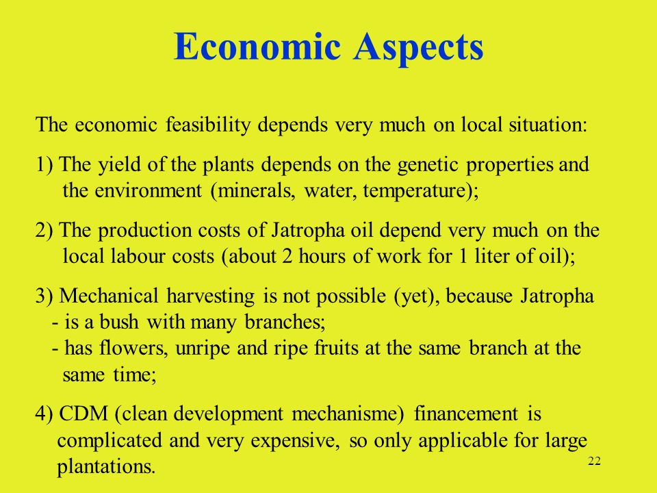 22 Economic Aspects The economic feasibility depends very much on local situation: 1) The yield of the plants depends on the genetic properties and th