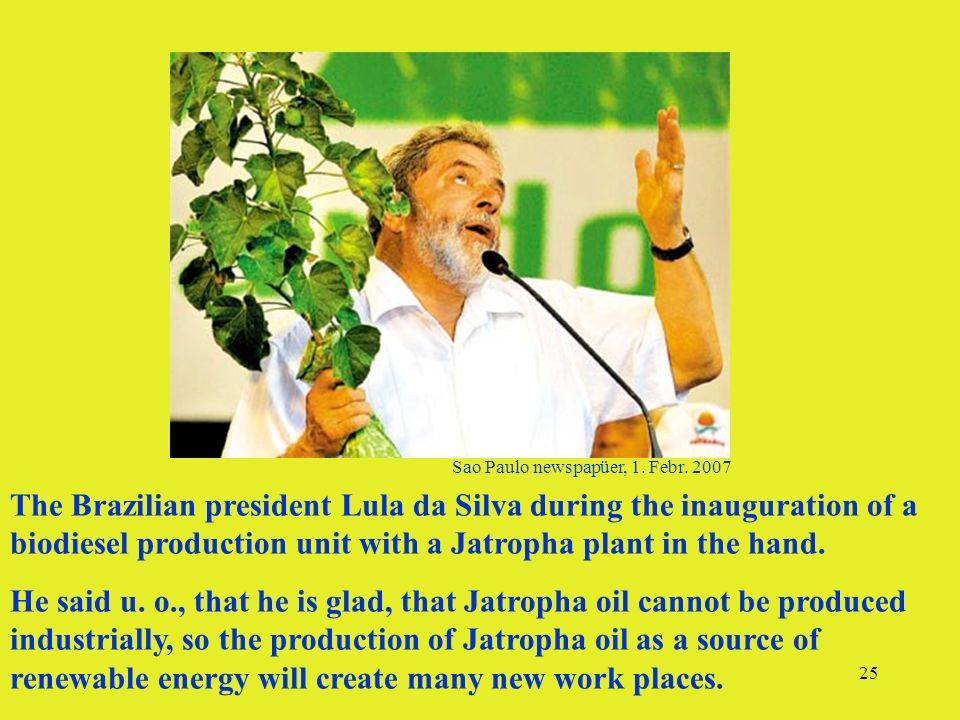 25 The Brazilian president Lula da Silva during the inauguration of a biodiesel production unit with a Jatropha plant in the hand. He said u. o., that