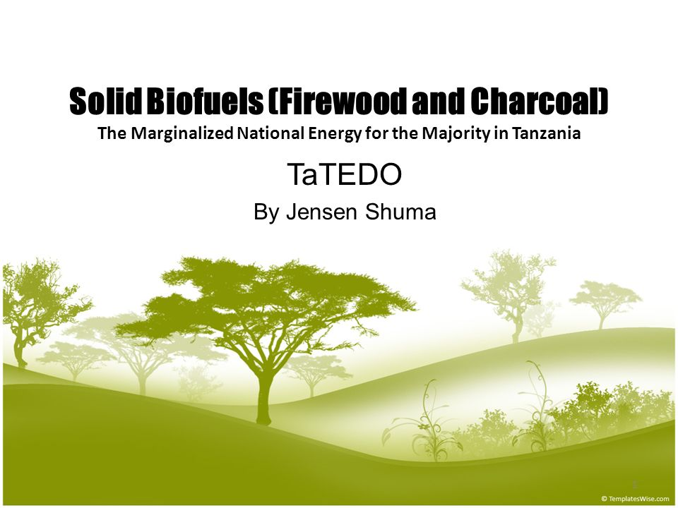 1 Solid Biofuels (Firewood and Charcoal) The Marginalized National Energy for the Majority in Tanzania TaTEDO By Jensen Shuma