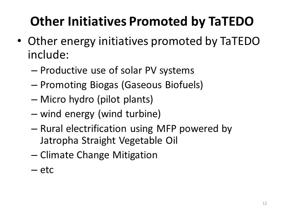 12 Other Initiatives Promoted by TaTEDO Other energy initiatives promoted by TaTEDO include: – Productive use of solar PV systems – Promoting Biogas (Gaseous Biofuels) – Micro hydro (pilot plants) – wind energy (wind turbine) – Rural electrification using MFP powered by Jatropha Straight Vegetable Oil – Climate Change Mitigation – etc