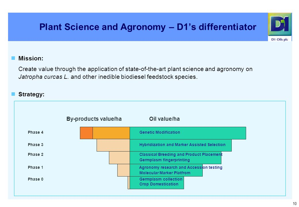 10 Plant Science and Agronomy – D1s differentiator Mission: Create value through the application of state-of-the-art plant science and agronomy on Jatropha curcas L.