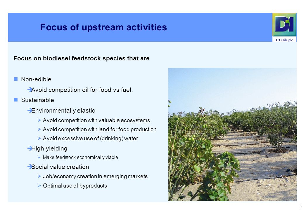 5 Focus of upstream activities Focus on biodiesel feedstock species that are Non-edible Avoid competition oil for food vs fuel.