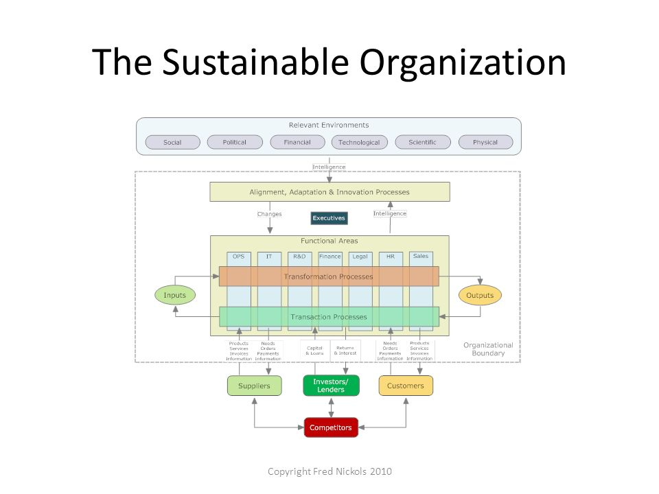 The Sustainable Organization Copyright Fred Nickols 2010