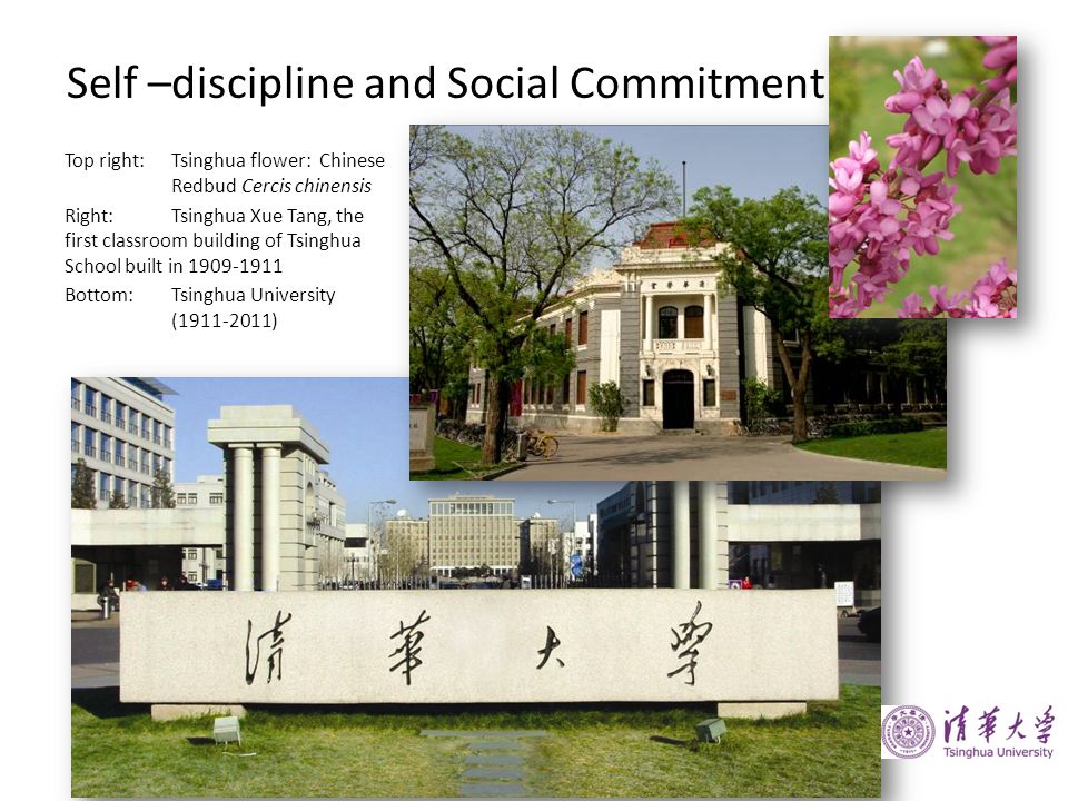 Self –discipline and Social Commitment Top right:Tsinghua flower: Chinese Redbud Cercis chinensis Right:Tsinghua Xue Tang, the first classroom buildin