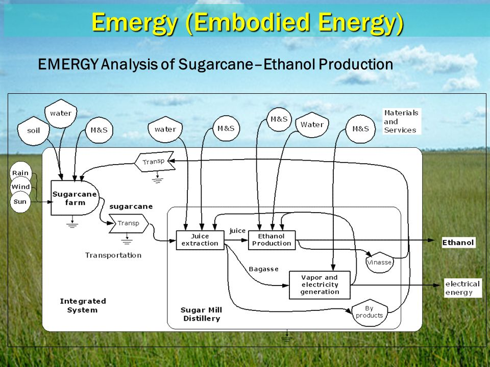 Emergy (Embodied Energy) EMERGY Analysis of Sugarcane–Ethanol Production