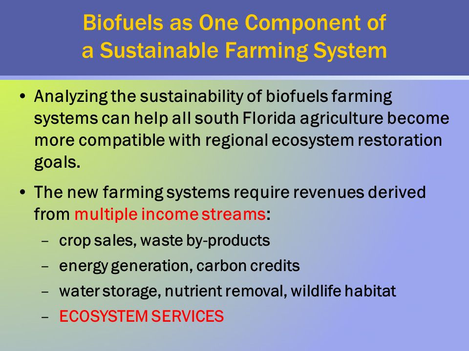 Biofuels as One Component of a Sustainable Farming System Analyzing the sustainability of biofuels farming systems can help all south Florida agriculture become more compatible with regional ecosystem restoration goals.