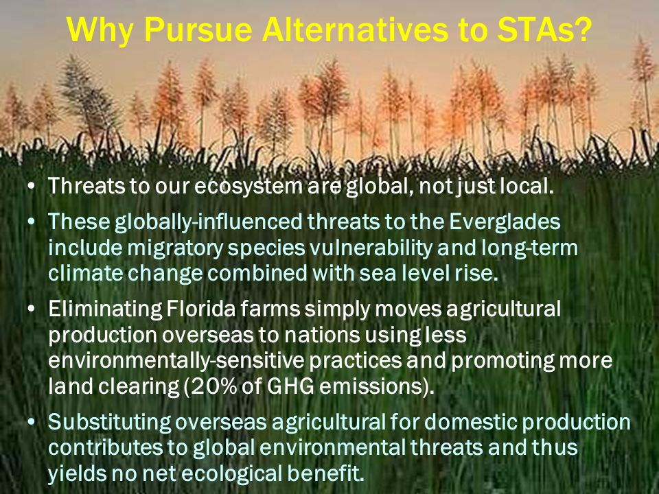Why Pursue Alternatives to STAs. Threats to our ecosystem are global, not just local.