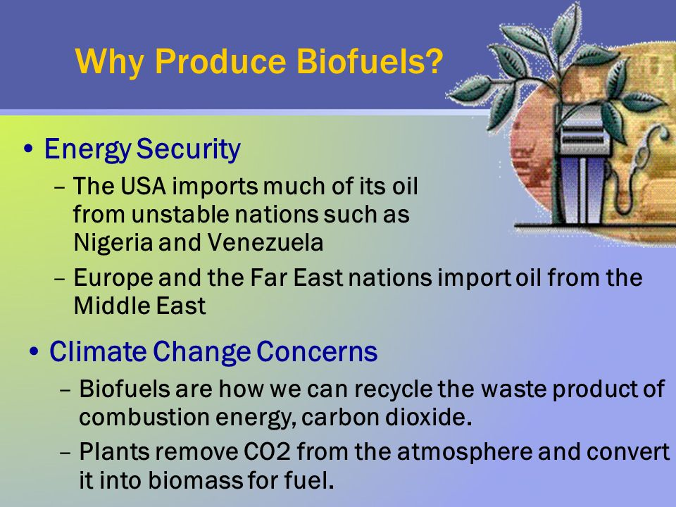Why Produce Biofuels? Energy Security –The USA imports much of its oil from unstable nations such as Nigeria and Venezuela –Europe and the Far East na