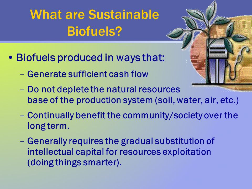 What are Sustainable Biofuels.