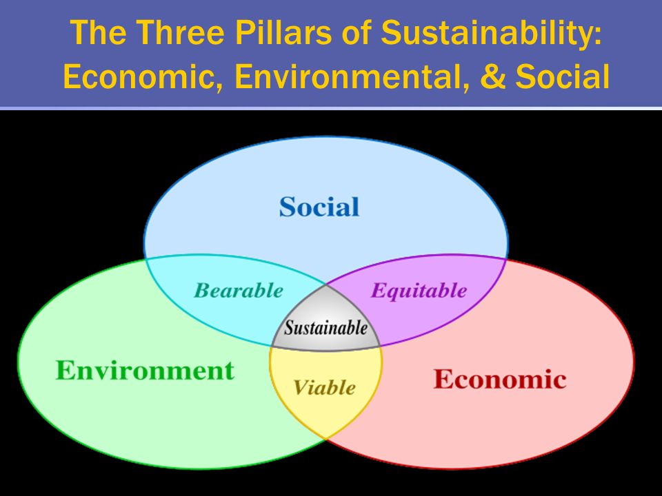 The Three Pillars of Sustainability: Economic, Environmental, & Social