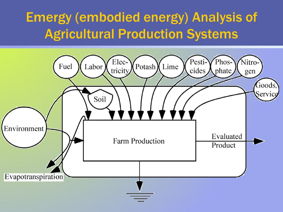 Emergy (embodied energy) Analysis of Agricultural Production Systems
