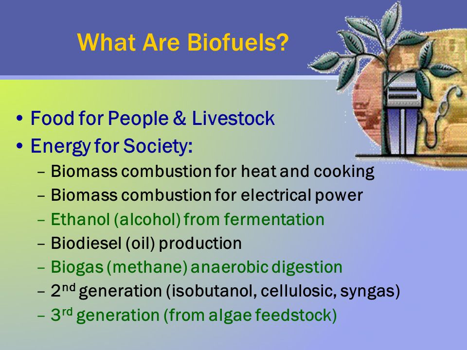 What Are Biofuels.