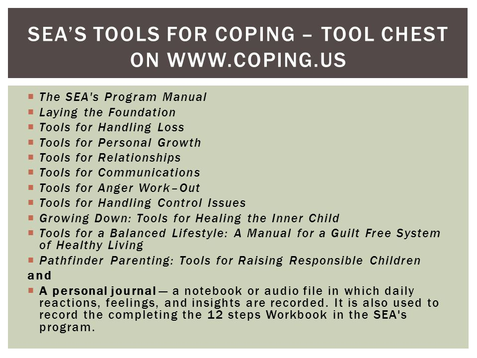 The SEA s Program Manual Laying the Foundation Tools for Handling Loss Tools for Personal Growth Tools for Relationships Tools for Communications Tools for Anger Work–Out Tools for Handling Control Issues Growing Down: Tools for Healing the Inner Child Tools for a Balanced Lifestyle: A Manual for a Guilt Free System of Healthy Living Pathfinder Parenting: Tools for Raising Responsible Children and A personal journal a notebook or audio file in which daily reactions, feelings, and insights are recorded.