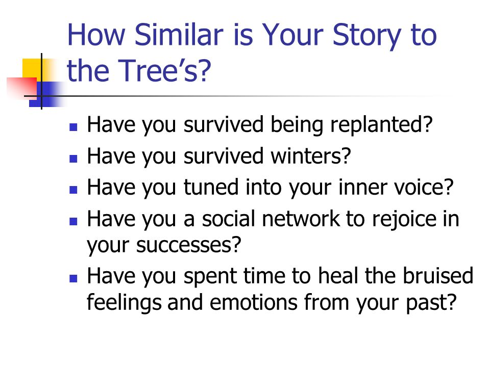 How Similar is Your Story to the Trees? Have you survived being replanted? Have you survived winters? Have you tuned into your inner voice? Have you a