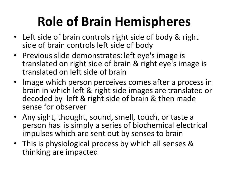 Role of Brain Hemispheres Left side of brain controls right side of body & right side of brain controls left side of body Previous slide demonstrates: