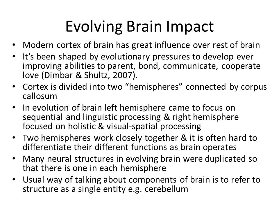 Evolving Brain Impact Modern cortex of brain has great influence over rest of brain Its been shaped by evolutionary pressures to develop ever improvin