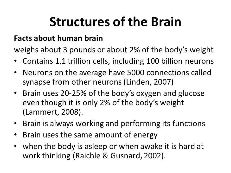 Structures of the Brain Facts about human brain weighs about 3 pounds or about 2% of the bodys weight Contains 1.1 trillion cells, including 100 billi