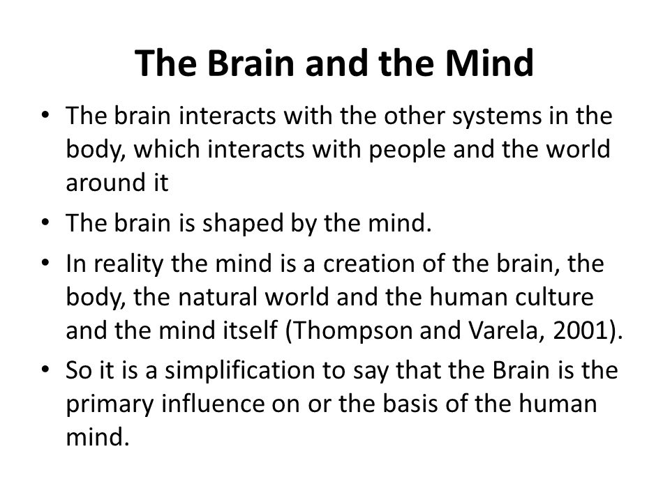 The Brain and the Mind The brain interacts with the other systems in the body, which interacts with people and the world around it The brain is shaped