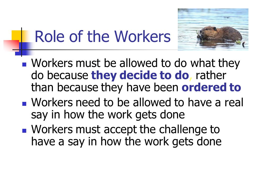 Role of the Workers Workers must be allowed to do what they do because they decide to do, rather than because they have been ordered to Workers need to be allowed to have a real say in how the work gets done Workers must accept the challenge to have a say in how the work gets done