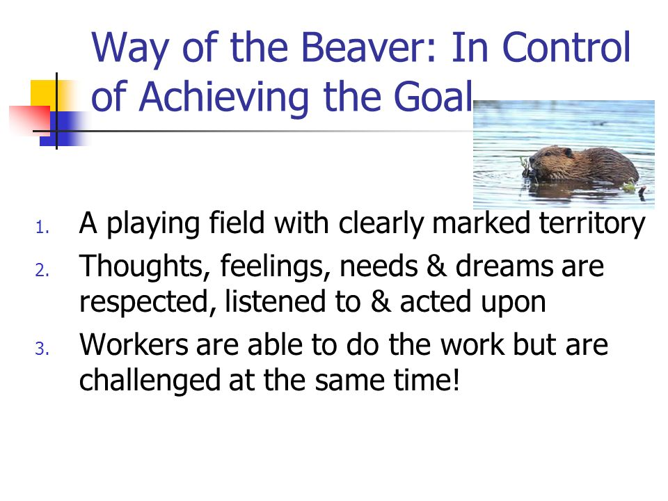 Way of the Beaver: In Control of Achieving the Goal 1.
