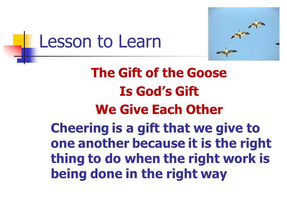 Lesson to Learn The Gift of the Goose Is Gods Gift We Give Each Other Cheering is a gift that we give to one another because it is the right thing to do when the right work is being done in the right way