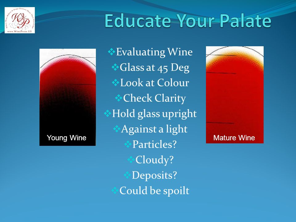 Evaluating Wine Glass at 45 Deg Look at Colour Check Clarity Hold glass upright Against a light Particles.