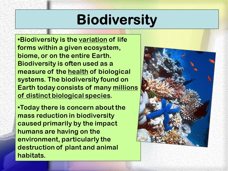 Question: Name some ecosystems that show high biodiversity and low biodiversity.