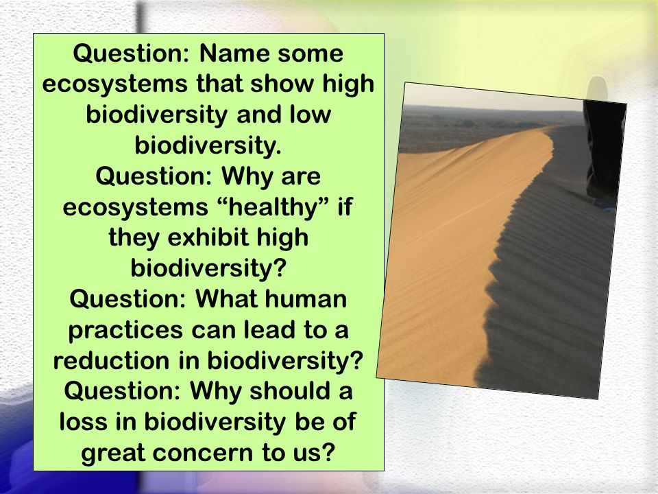 Question: Name some ecosystems that show high biodiversity and low biodiversity. Question: Why are ecosystems healthy if they exhibit high biodiversit