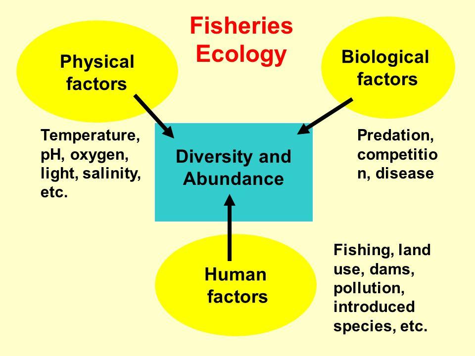 Diversity and Abundance Human factors Biological factors Physical factors Temperature, pH, oxygen, light, salinity, etc. Predation, competitio n, dise