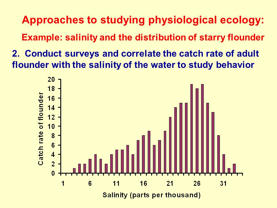 Approaches to studying physiological ecology: Example: salinity and the distribution of starry flounder 2.