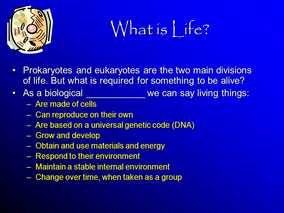 11 What is Life? Prokaryotes and eukaryotes are the two main divisions of life. But what is required for something to be alive?Prokaryotes and eukaryo