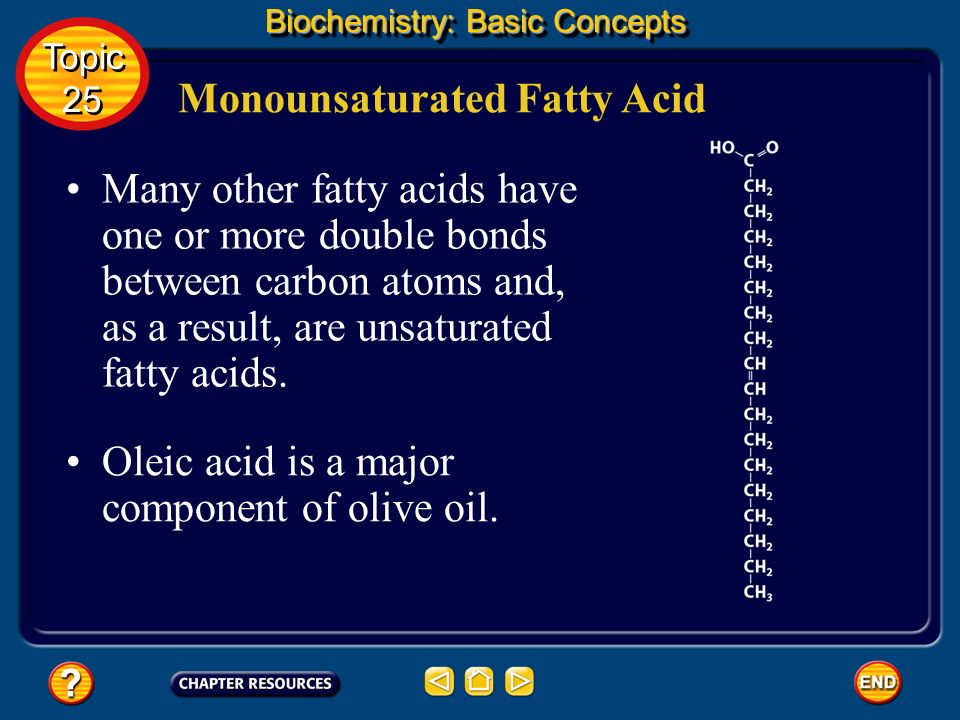 The simplest fatty acids are the saturated fatty acids, which have no double bonds between carbon atoms. Saturated Fatty Acid Biochemistry: Basic Conc
