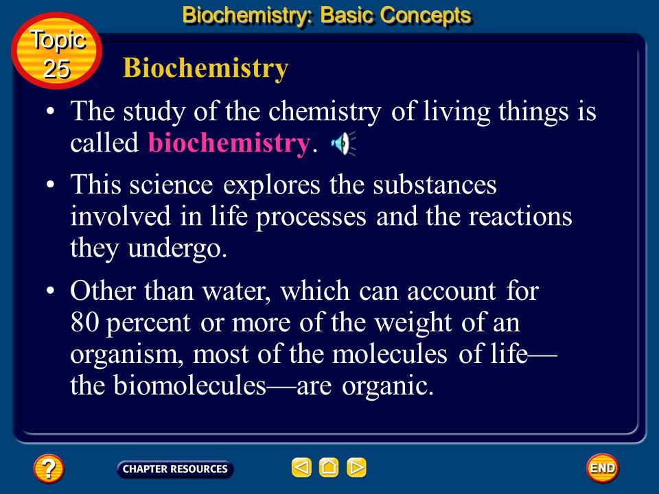 You need relatively large amounts of proteins, carbohydrates, and lipids in your diet. Molecules of Life Biochemistry: Basic Concepts Complex reaction