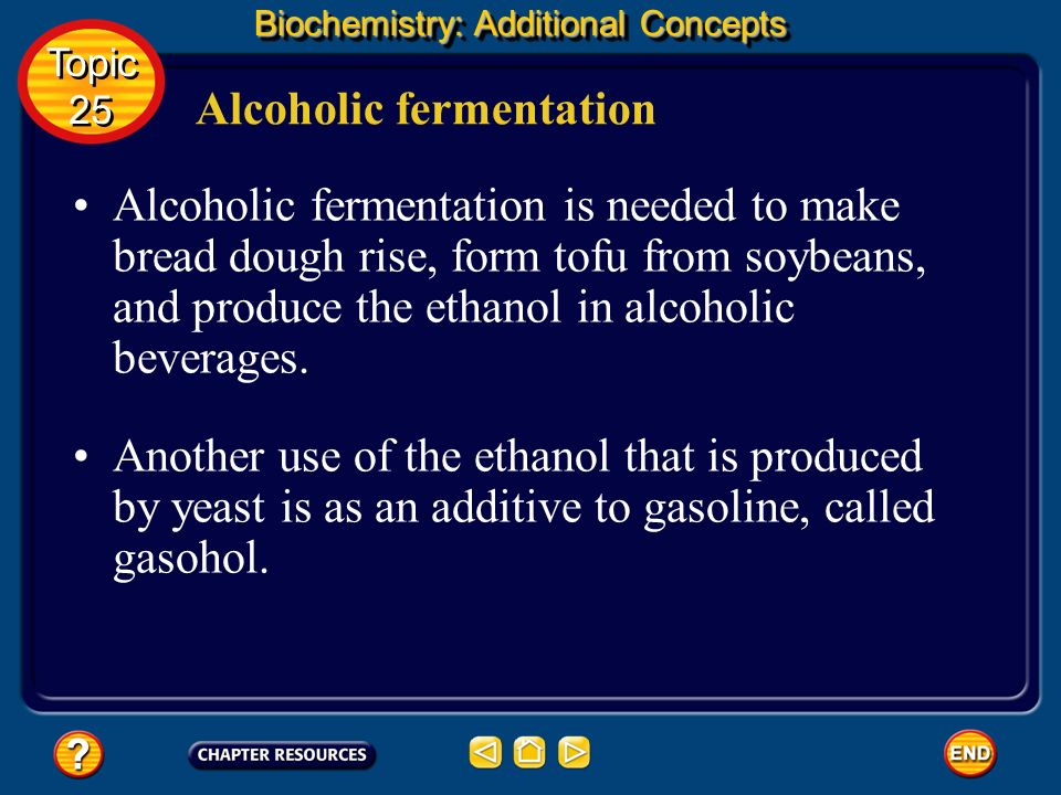Biochemistry: Additional Concepts Alcoholic fermentation Topic 25 Topic 25