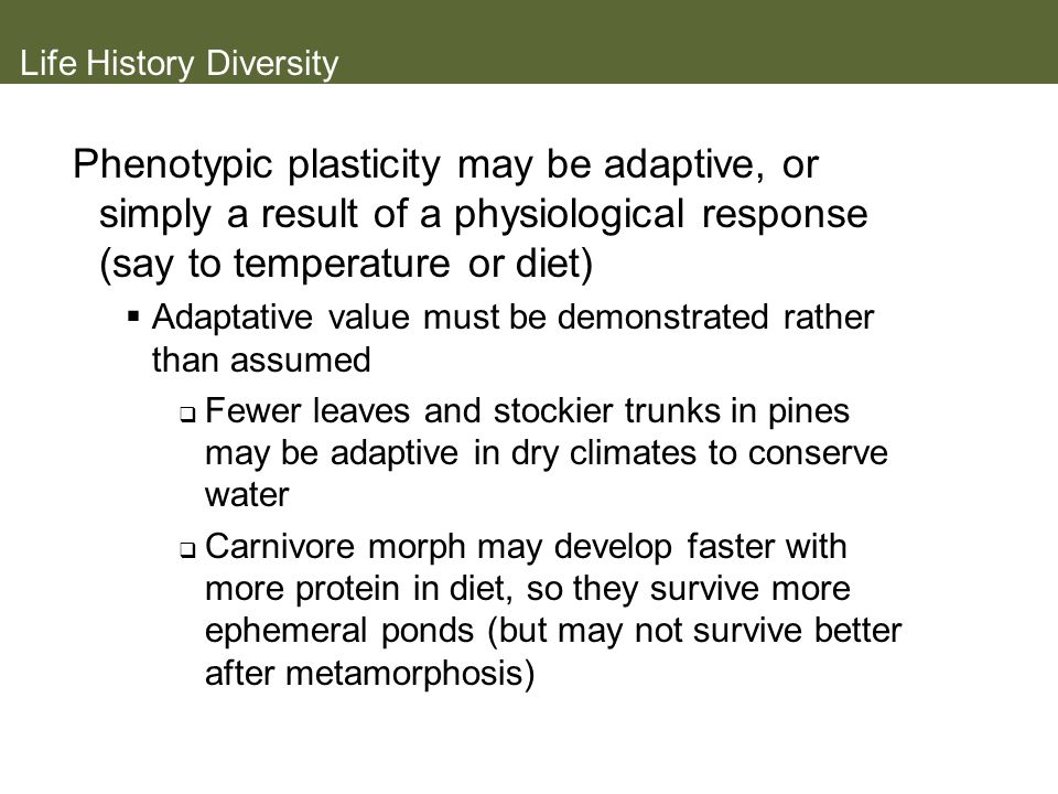 Life History Diversity Phenotypic plasticity may be adaptive, or simply a result of a physiological response (say to temperature or diet) Adaptative v
