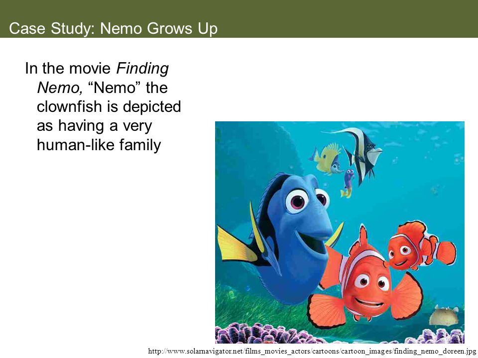 Case Study: Nemo Grows Up In the movie Finding Nemo, Nemo the clownfish is depicted as having a very human-like family http://www.solarnavigator.net/f